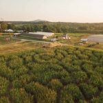 Yoders' Farm - Locally grown, gourmet produce & family activities.